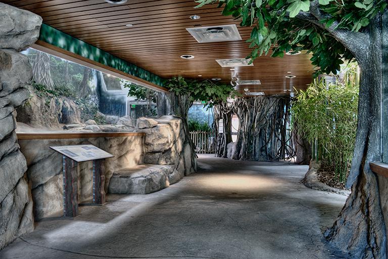 Denver Zoo Toyota Elephant Passage